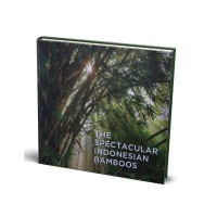 The Spectacular Indonesian Bamboos